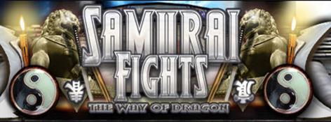 Samurai Fights